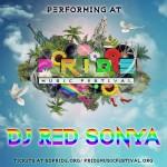 Pride Festival Diversity Podcast
